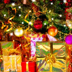 Servicio Opcional de Navidad